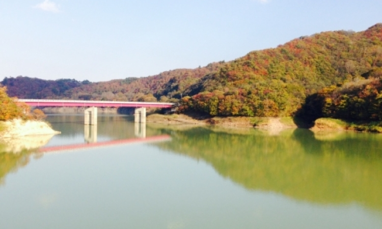富樫ブログ「秋の過ごし方」